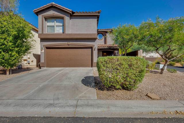 3376 S Bowman Road, Apache Junction, AZ 85119 (MLS #6148193) :: Sheli Stoddart Team | M.A.Z. Realty Professionals