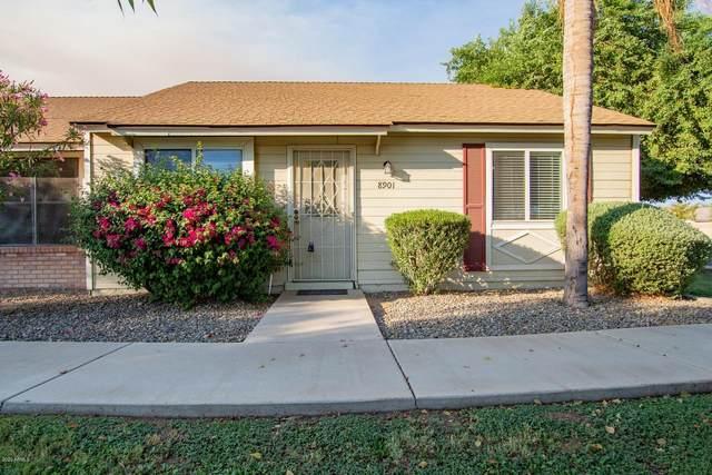 8901 W Desert Jewel Drive, Peoria, AZ 85345 (MLS #6148207) :: Sheli Stoddart Team | M.A.Z. Realty Professionals