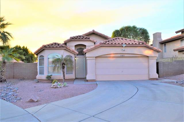 7592 W Kerry Lane, Glendale, AZ 85308 (MLS #6148223) :: The Laughton Team