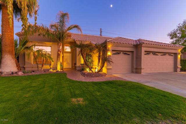 4537 E Mountain Sky Avenue, Phoenix, AZ 85044 (MLS #6148234) :: Nate Martinez Team