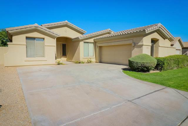 14458 W Lexington Avenue, Goodyear, AZ 85395 (MLS #6148244) :: Devor Real Estate Associates