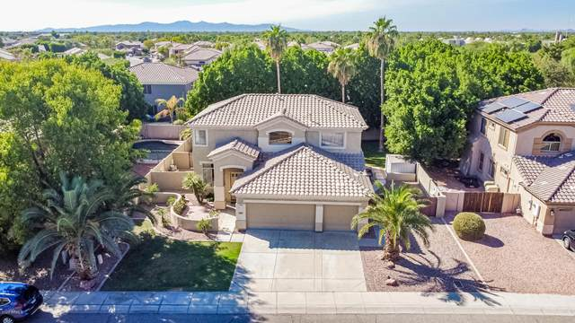 19414 N 61ST Avenue, Glendale, AZ 85308 (MLS #6148265) :: The Laughton Team