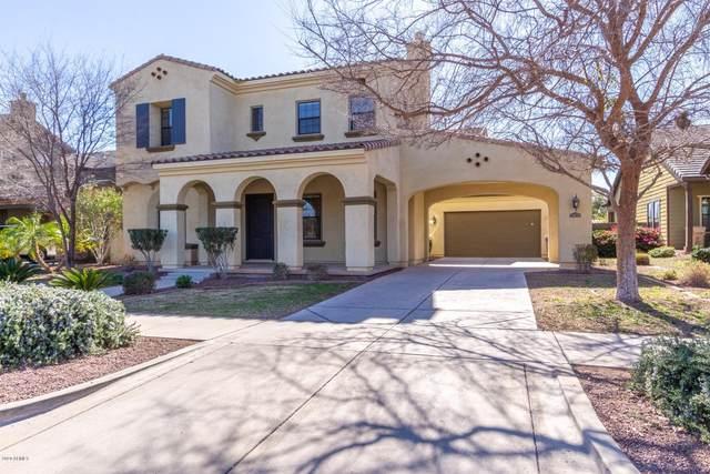 20835 W Western Drive, Buckeye, AZ 85396 (MLS #6148313) :: Devor Real Estate Associates
