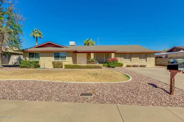 2850 E Cannon Drive, Phoenix, AZ 85028 (MLS #6148321) :: REMAX Professionals
