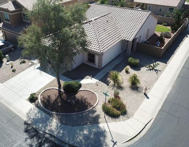 44453 W Caven Drive, Maricopa, AZ 85138 (MLS #6148322) :: Sheli Stoddart Team   M.A.Z. Realty Professionals