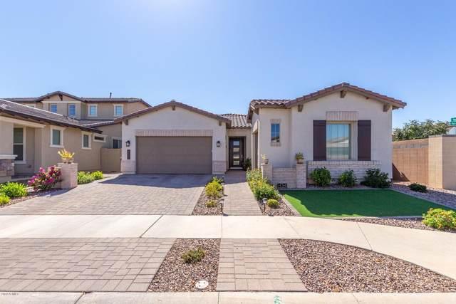 3861 E Harrison Street, Gilbert, AZ 85295 (MLS #6148369) :: John Hogen | Realty ONE Group