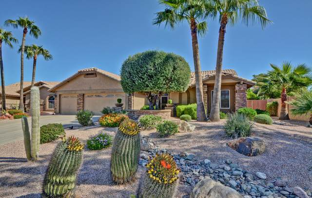 19829 N 84TH Lane, Peoria, AZ 85382 (MLS #6148381) :: Scott Gaertner Group