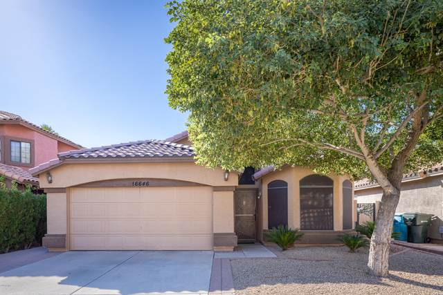 16646 N 59TH Place, Scottsdale, AZ 85254 (MLS #6148399) :: My Home Group