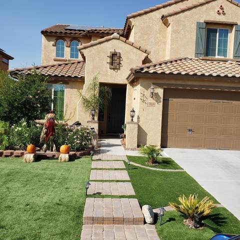25538 N 104TH Drive, Peoria, AZ 85383 (MLS #6148402) :: My Home Group
