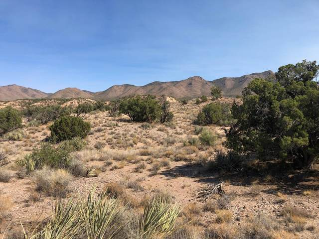 Lot 312 Howard Road, Kingman, AZ 86401 (MLS #6148430) :: Openshaw Real Estate Group in partnership with The Jesse Herfel Real Estate Group