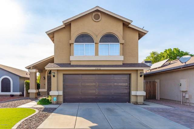 19846 N 36TH Drive, Glendale, AZ 85308 (MLS #6148435) :: D & R Realty LLC