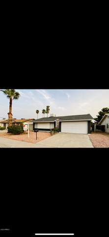 5909 W Nancy Road W, Glendale, AZ 85306 (MLS #6148450) :: The Ellens Team