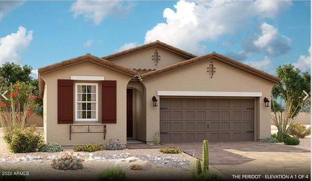 723 E Betsy Lane, Gilbert, AZ 85296 (MLS #6148469) :: Nate Martinez Team