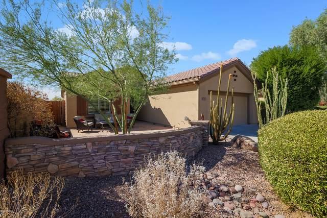 40702 N Noble Hawk Court, Phoenix, AZ 85086 (MLS #6148481) :: The Everest Team at eXp Realty