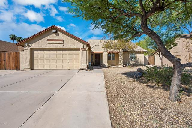 2502 N Cholla Street, Chandler, AZ 85224 (MLS #6148490) :: Sheli Stoddart Team | M.A.Z. Realty Professionals