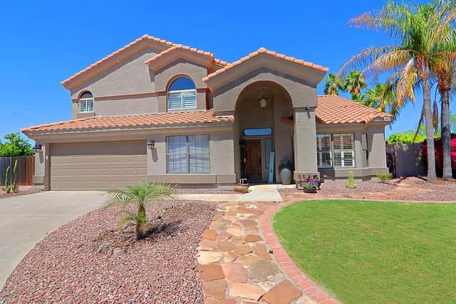 1142 E Kings Avenue, Phoenix, AZ 85022 (MLS #6148520) :: My Home Group