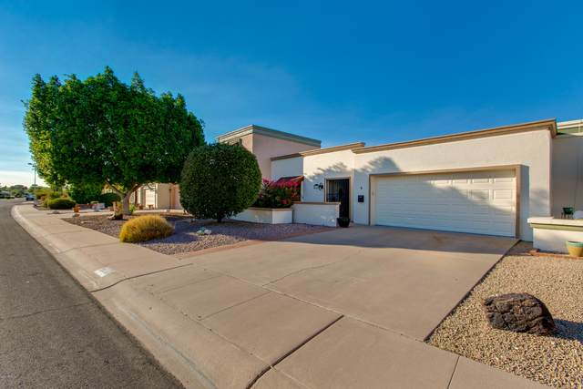 6314 E Catalina Drive, Scottsdale, AZ 85251 (MLS #6148537) :: The W Group