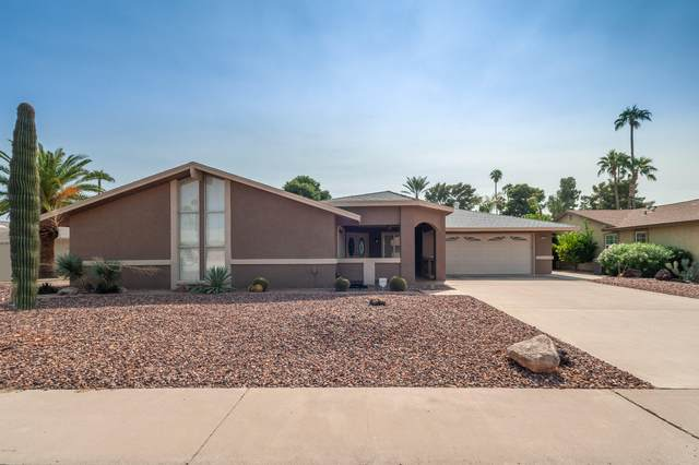 9801 W Pinecrest Drive, Sun City, AZ 85351 (MLS #6148538) :: Openshaw Real Estate Group in partnership with The Jesse Herfel Real Estate Group