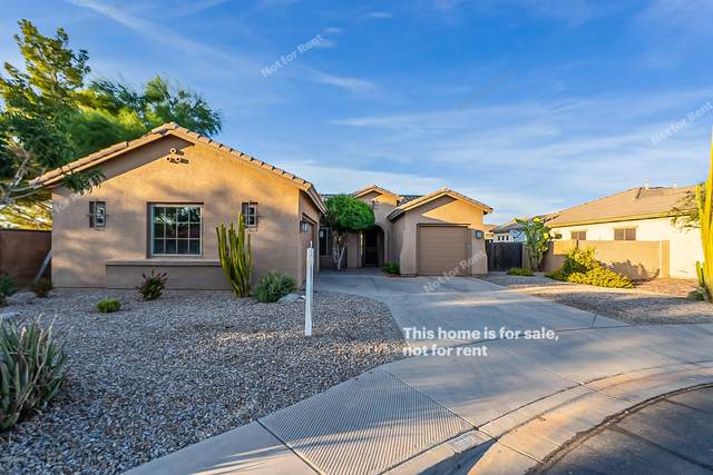 3882 E Virgo Place, Chandler, AZ 85249 (MLS #6148542) :: Openshaw Real Estate Group in partnership with The Jesse Herfel Real Estate Group