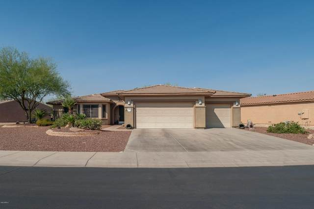21586 N Casa Royale Drive, Surprise, AZ 85387 (MLS #6148545) :: Lucido Agency