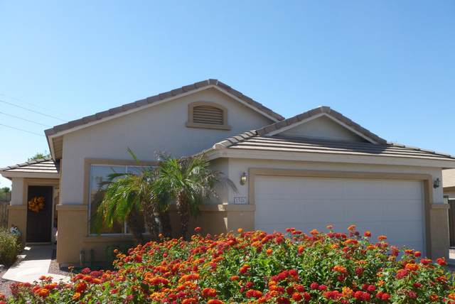 1526 S King Circle, Mesa, AZ 85206 (MLS #6148568) :: Homehelper Consultants