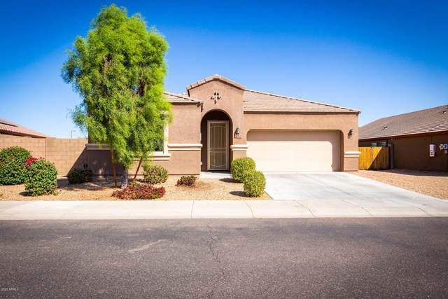 21860 W Hopi Street, Buckeye, AZ 85326 (MLS #6148588) :: The Carin Nguyen Team