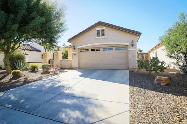 26121 W Tonto Lane, Buckeye, AZ 85396 (MLS #6148603) :: Sheli Stoddart Team | M.A.Z. Realty Professionals