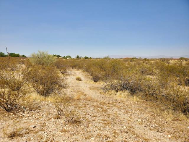 21400 W Vista Royale Drive, Wickenburg, AZ 85390 (MLS #6148608) :: Dave Fernandez Team | HomeSmart