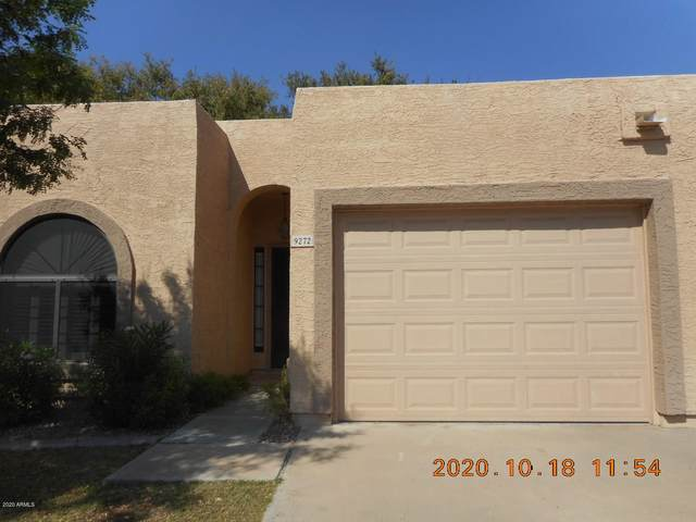 9272 W Morrow Drive, Peoria, AZ 85382 (MLS #6148619) :: The Carin Nguyen Team