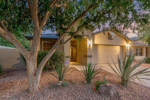 10605 W Windsor Avenue, Avondale, AZ 85392 (MLS #6148656) :: Devor Real Estate Associates