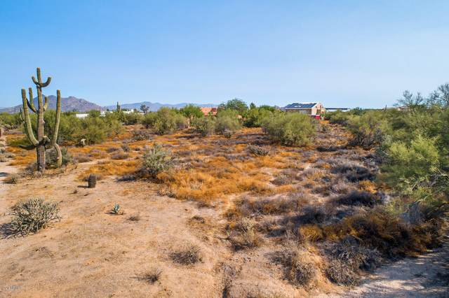 6234 E Milton Drive, Cave Creek, AZ 85331 (MLS #6148685) :: Scott Gaertner Group
