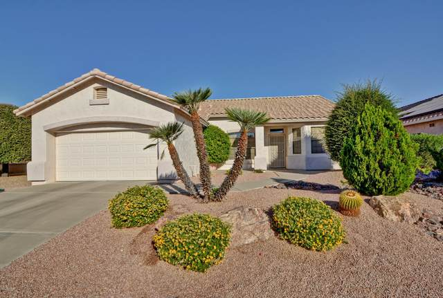 17606 N Goldwater Drive, Surprise, AZ 85374 (MLS #6148686) :: Midland Real Estate Alliance