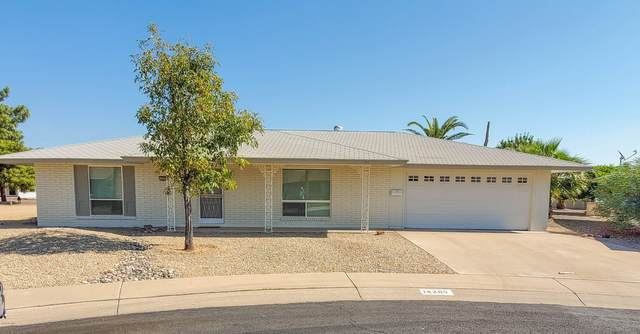 14205 N Crown Point Court, Sun City, AZ 85351 (MLS #6148724) :: NextView Home Professionals, Brokered by eXp Realty