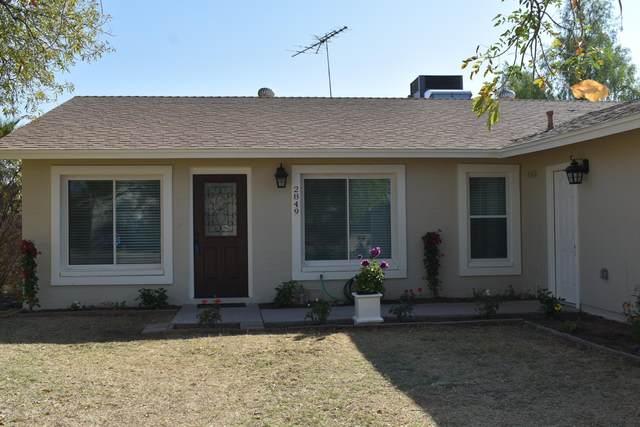 2849 E Pershing Avenue, Phoenix, AZ 85032 (MLS #6148728) :: Long Realty West Valley