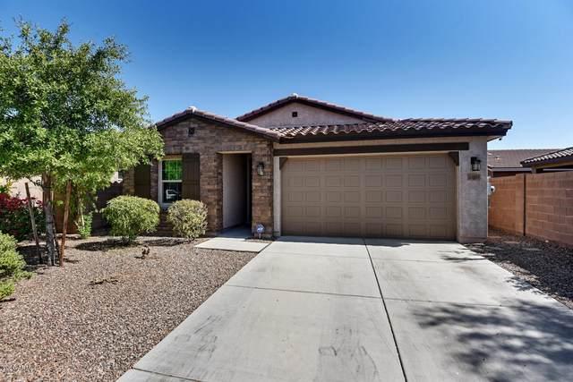 25823 N 122ND Lane, Peoria, AZ 85383 (MLS #6148750) :: Walters Realty Group