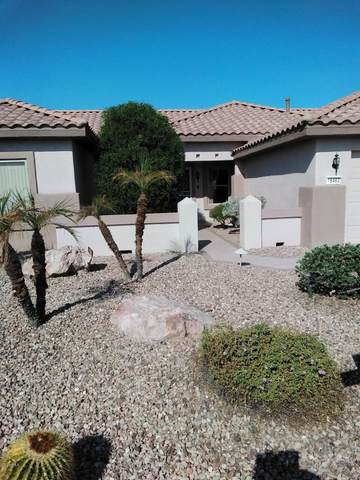 16462 W Dos Amigos Court, Surprise, AZ 85374 (MLS #6148751) :: Sheli Stoddart Team | M.A.Z. Realty Professionals