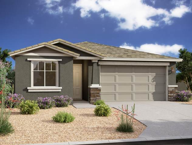 13354 W Lariat Lane, Peoria, AZ 85383 (MLS #6148767) :: Walters Realty Group