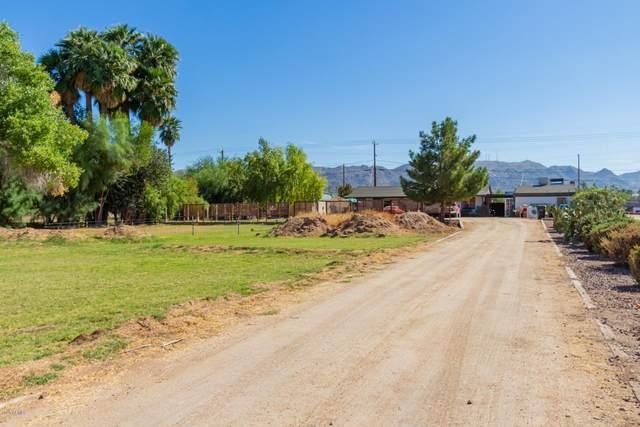 311 E Carter Road, Phoenix, AZ 85042 (MLS #6148792) :: Brett Tanner Home Selling Team