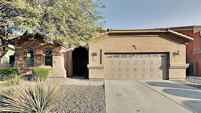 24744 W Illini Street, Buckeye, AZ 85326 (MLS #6148805) :: Sheli Stoddart Team | M.A.Z. Realty Professionals