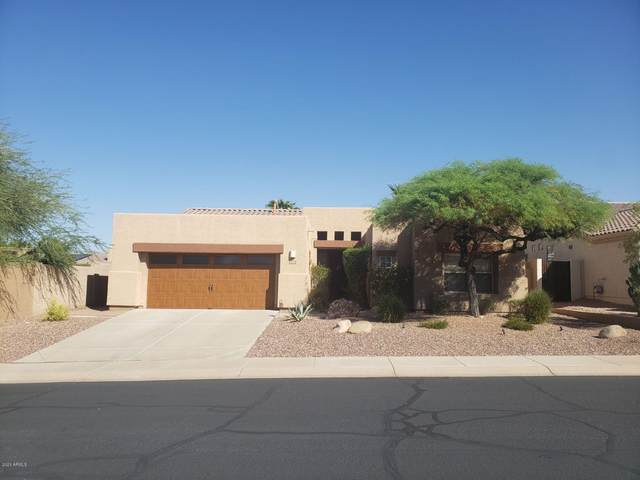 11381 S Santa Fe Lane, Goodyear, AZ 85338 (MLS #6148822) :: The AZ Performance PLUS+ Team
