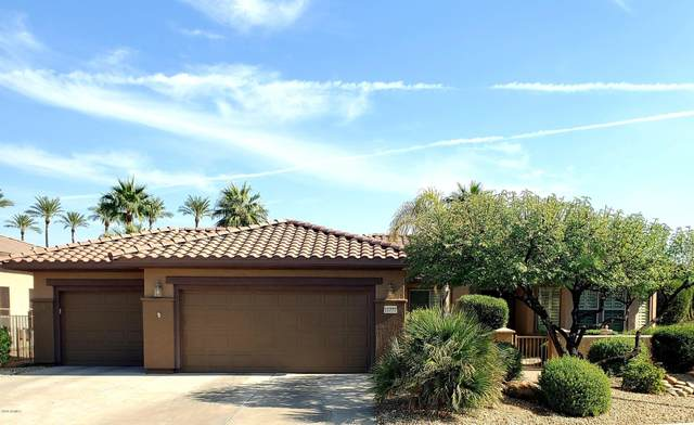 16770 W Brookhaven Court, Surprise, AZ 85387 (MLS #6148829) :: Sheli Stoddart Team | M.A.Z. Realty Professionals
