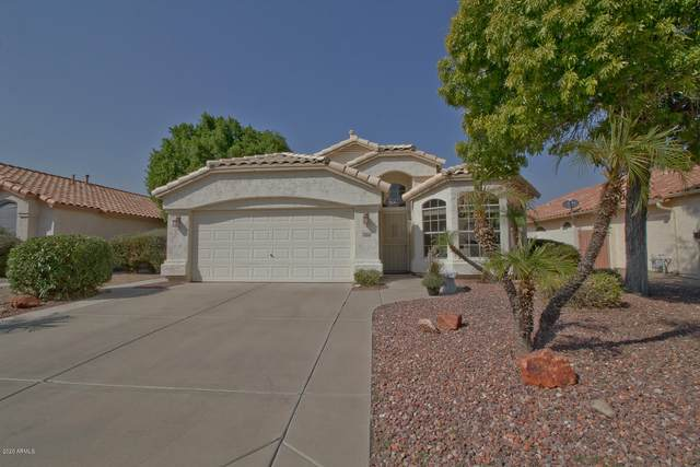 9746 W Tonopah Drive, Peoria, AZ 85382 (MLS #6148832) :: Power Realty Group Model Home Center