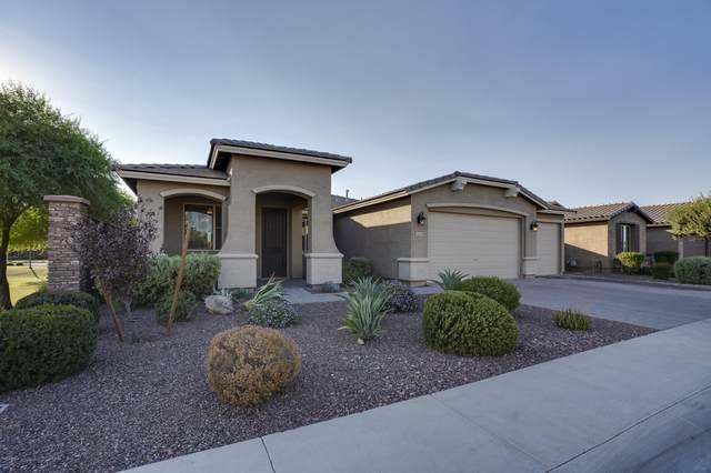 42214 N Ambrosio Drive, San Tan Valley, AZ 85140 (MLS #6148833) :: Dijkstra & Co.