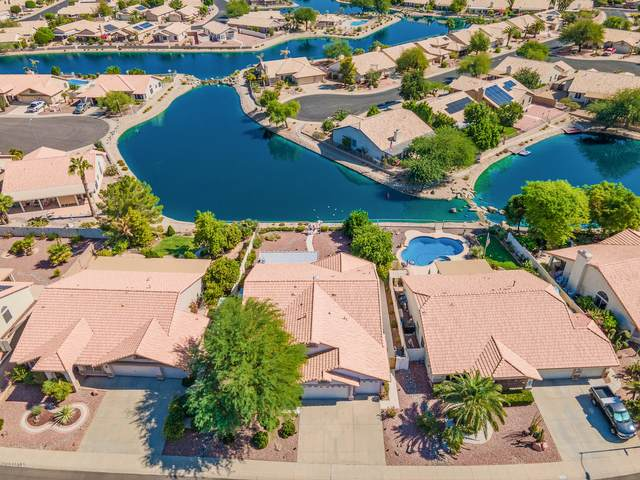 20653 N 110TH Avenue, Sun City, AZ 85373 (MLS #6148878) :: neXGen Real Estate
