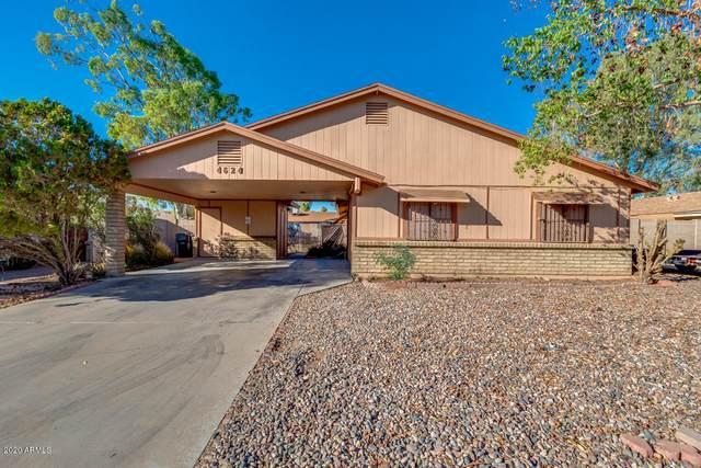 4624 E Camino Street, Mesa, AZ 85205 (MLS #6148882) :: John Hogen | Realty ONE Group