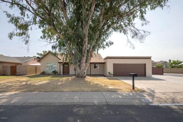 513 E Rosemonte Drive, Phoenix, AZ 85024 (MLS #6148950) :: The AZ Performance PLUS+ Team