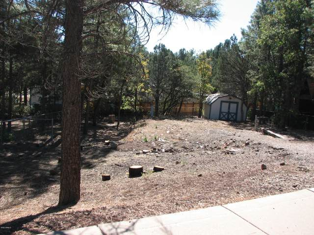 921 S 11th Avenue, Show Low, AZ 85901 (MLS #6148952) :: The Property Partners at eXp Realty