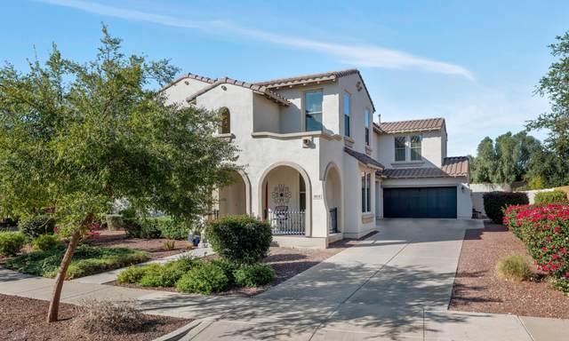 3858 N Springfield Street, Buckeye, AZ 85396 (MLS #6148960) :: Sheli Stoddart Team | M.A.Z. Realty Professionals