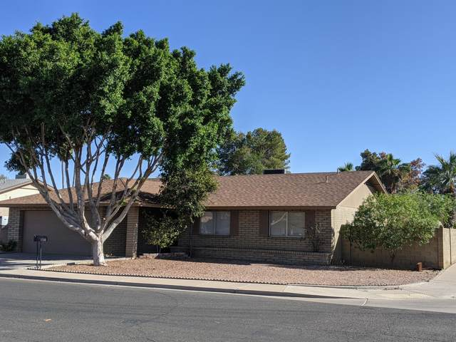 1121 W Juanita Avenue, Mesa, AZ 85210 (MLS #6148963) :: Walters Realty Group