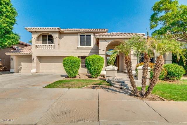 12922 W Llano Drive, Litchfield Park, AZ 85340 (MLS #6148965) :: Nate Martinez Team